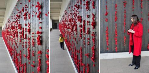 poppy canberra war memorial